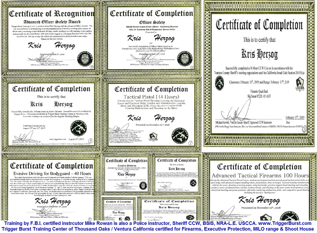 Celebrity Bodyguard Kris Herzog bodyguard training certificates The Bodyguard Group of Beverly Hills 90210 security 2019
